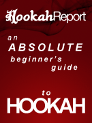 Learn everything you need to know to start smoking hookah right now!